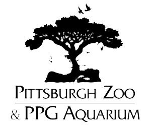 Learn more about Pittsburgh Zoo & PPG Aquarium, Opens a popup Specialties Explore 77 acres of lush, tropical land that houses more than 9, animals across species, including 50 species of concern.4/4().