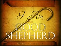 Shepherd of All